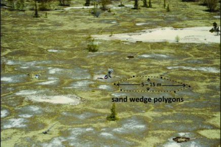 Geomorphic implications of contemporary sand wedges in seasonally frozen ground
